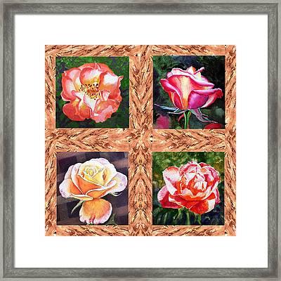 A Single Rose Quartet  Framed Print