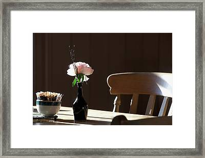 A Single Rose Sits In A Small Vase Framed Print by John Short