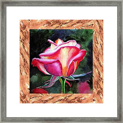 A Single Rose The Silky Light Framed Print by Irina Sztukowski