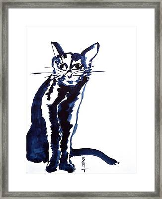 A Sketchy Cat Framed Print by Beverley Harper Tinsley