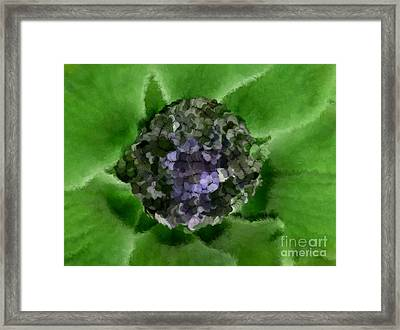 A Sky Full Of Lighters Green Blue Framed Print by Holley Jacobs