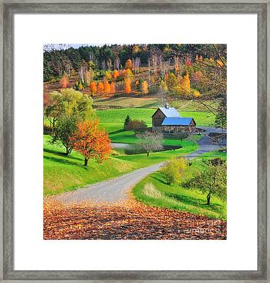 Sleepy Hollow Autumn - Pomfret Vermont Framed Print by Thomas Schoeller