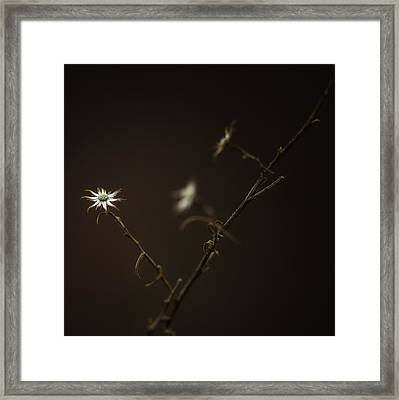 Framed Print featuring the photograph A Sliver Of Hope by Russell Styles
