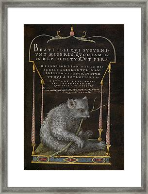 A Sloth Joris Hoefnagel, Flemish  Hungarian, 1542 - 1600 Framed Print by Litz Collection