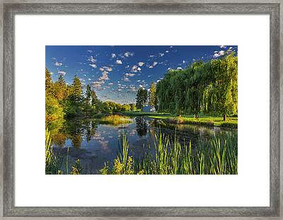 A Slough Of The Flathead River Catches Framed Print by Chuck Haney