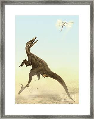 A Small Predatory Sinornithosaurus Framed Print by Jan Sovak