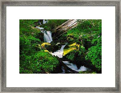 A Small Slice Of Paradise Framed Print by Jeff Swan