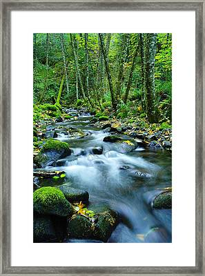 A Small Song In The Big Beauty Framed Print by Jeff Swan