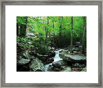 A Smoky Mountain Stream 2 Framed Print