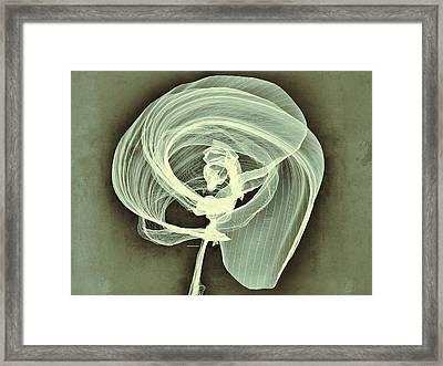 A Smooth Awakening Framed Print by Guillermo De Llera
