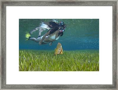 A Snorkeler With Juvenile Batfish Framed Print by Science Photo Library