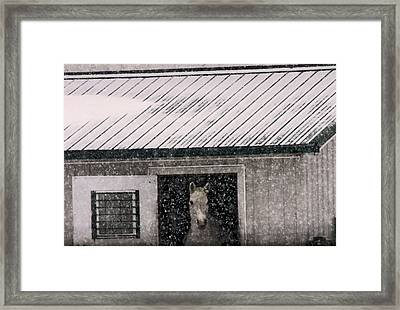 A Snowfall At The Stable Framed Print