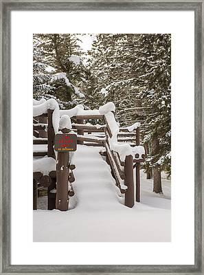 A Snowy Fire Escape Framed Print by Tim Grams