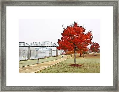 A Soft Autumn Day Framed Print by Tom and Pat Cory