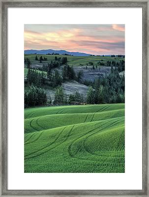 A Soft Sunset Framed Print