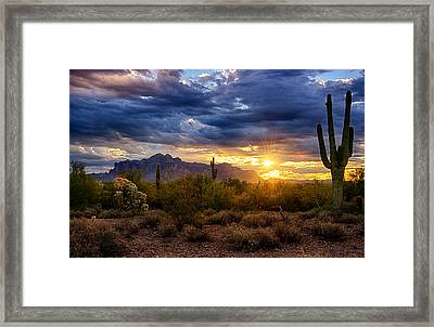 A Sonoran Desert Sunrise Framed Print by Saija  Lehtonen