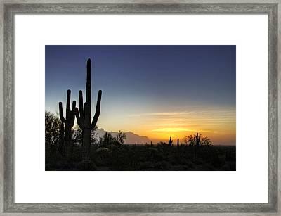 A Sonoran Sunrise  Framed Print