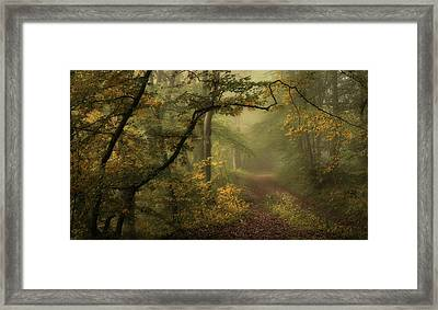 A Sorrow Beyond Dreams / Color Framed Print by Norbert Maier