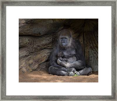 A Special Moment Framed Print