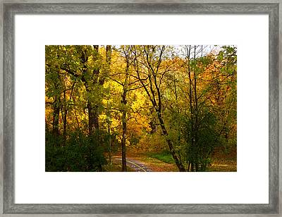 A Special Road Framed Print by Jocelyne Choquette