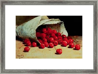 A Spilled Bag Of Cherries Framed Print