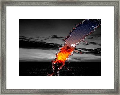 A Splash Of Color Framed Print