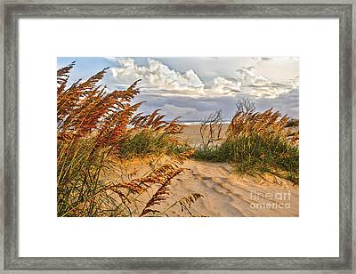 A Splendid Day At The Beach - Outer Banks Framed Print by Dan Carmichael