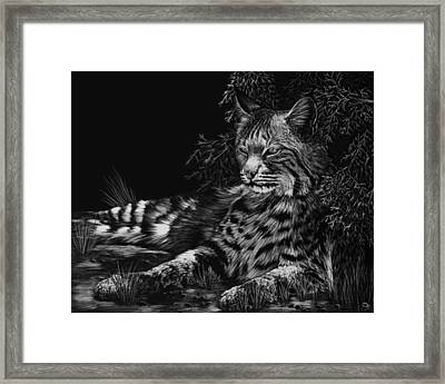 A Spot Of Shade Framed Print by Heather Ward