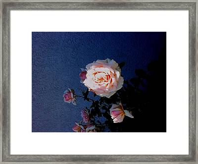 Framed Print featuring the photograph A Spot Of Sunlight by Fred Wilson