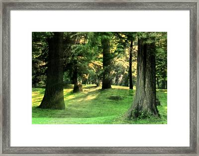 Spring Afternoon In Brookdale Park Framed Print by Kellice Swaggerty