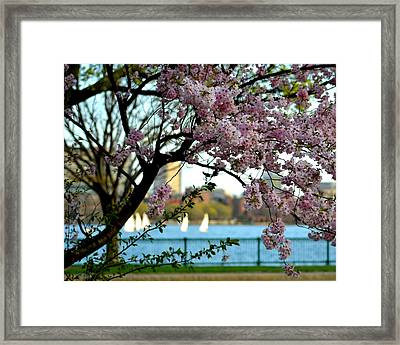 A Spring Day On The Charles River Framed Print by Toby McGuire