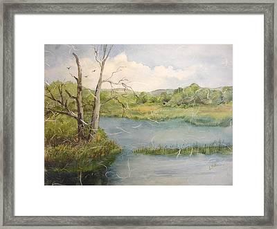 A Spring Walk Framed Print