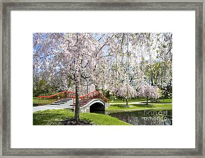 A Spring Walk Framed Print by Paul W Faust -  Impressions of Light