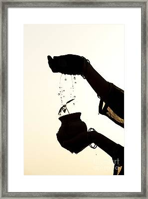 A Sprinkle Of Water Framed Print by Tim Gainey