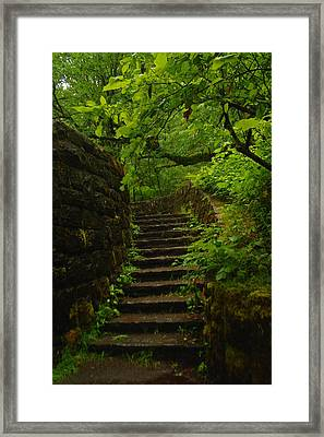 A Stairway To The Green Framed Print