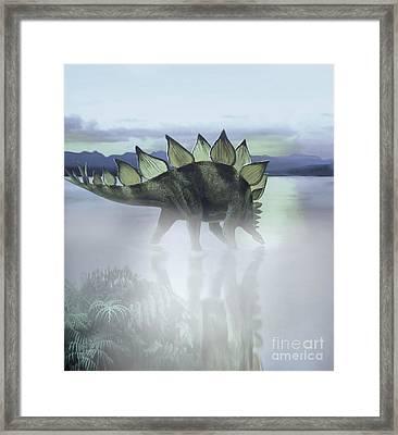 A Stegosaurus Dinosaur Grazing Framed Print by Jan Sovak