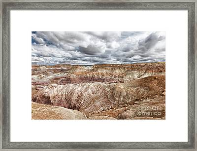 A Storm Is Brewing Framed Print by Sandra Bronstein