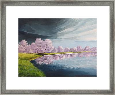 A Storm Over Cherry Trees Framed Print by Wanda Dansereau