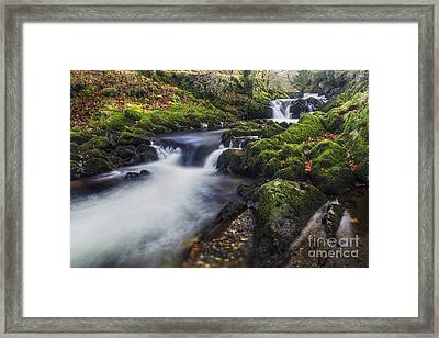 A Stream Of Snowdon Framed Print by Ian Mitchell