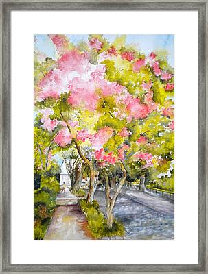 A Street In Charleston Framed Print