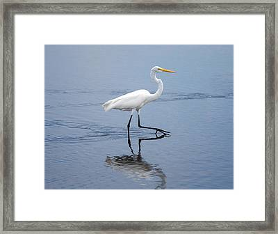 Framed Print featuring the photograph A Stroll In The Marsh by John M Bailey