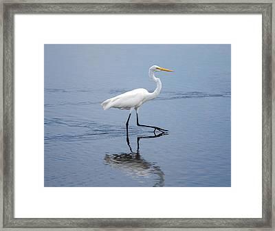 A Stroll In The Marsh Framed Print by John M Bailey