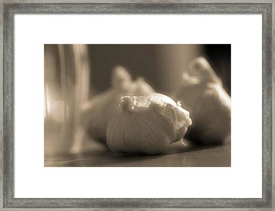 A Study On Garlic Framed Print by Dan Sproul