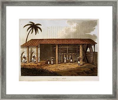 A Sugar Mill Framed Print by British Library