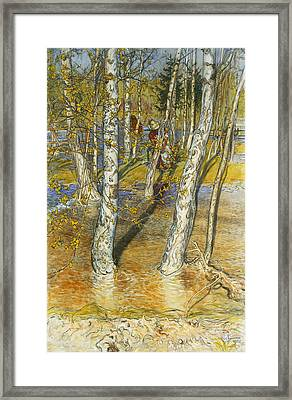 A Summer Day On A Norwegian Fjord Framed Print