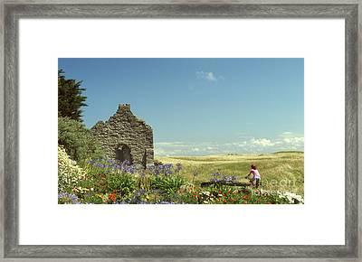 A Summer's Day Framed Print by Carol Weitz