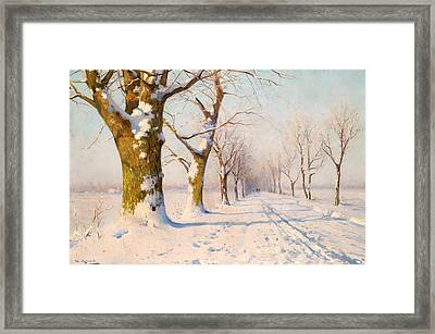 A Sunny Winter's Day Framed Print
