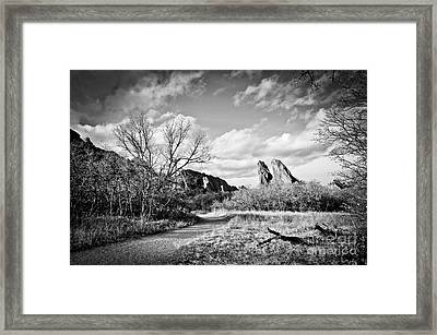 A Surreal Walk Framed Print