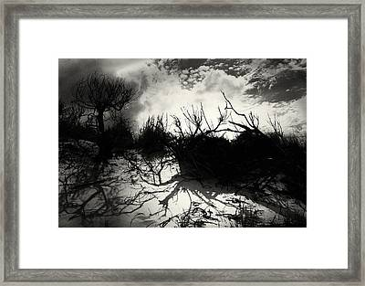 A Symphony Of Light And Shadows Framed Print by Gerlinde Keating - Galleria GK Keating Associates Inc