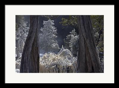 Cedar River Framed Prints